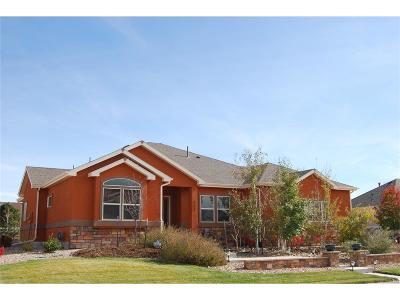 Fort Lupton Single Family Home Active: 214 Appel Court