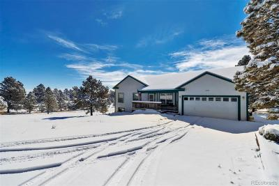 Elbert County Single Family Home Active: 27678 East Broadview Drive