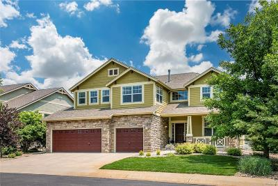 Evergreen, Arvada, Golden Single Family Home Active: 5882 McIntyre Court