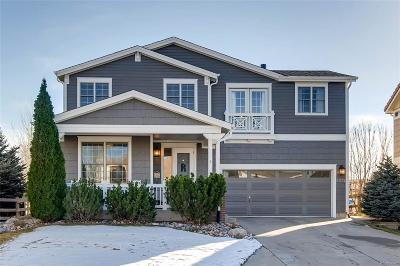 Castle Rock Single Family Home Active: 3975 Brushwood Way