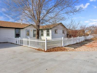 Hudson Single Family Home Under Contract: 15 Dahlia Street