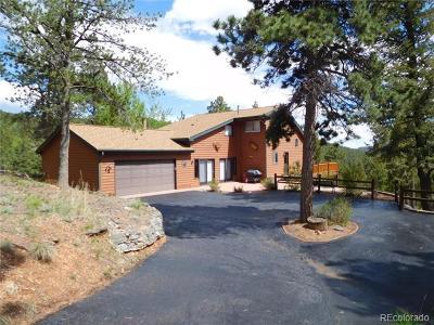 Pine Single Family Home Active: 162 Ridge Road