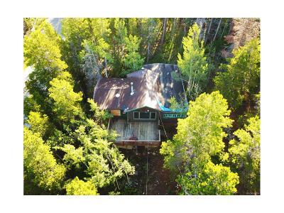 Golden Single Family Home Active: 52 Black Bear Trail