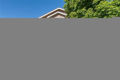 Single Family Home Active: 911 South Quintero Court