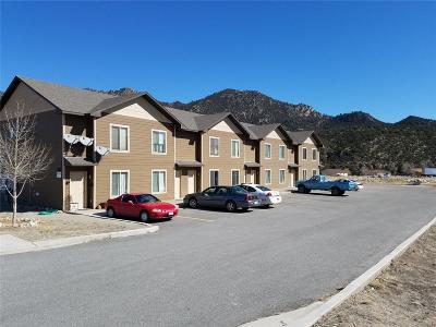 Buena Vista Condo/Townhouse Under Contract: 480 Antero Circle #107