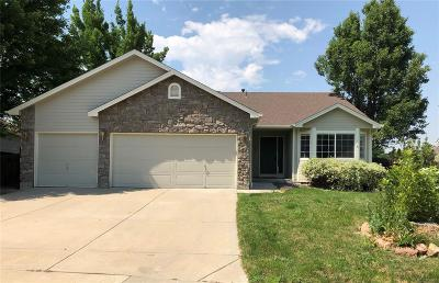 Erie Single Family Home Active: 1324 Banner Circle