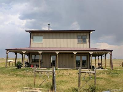 Elbert County Single Family Home Active: 41467 Way Of Goodness