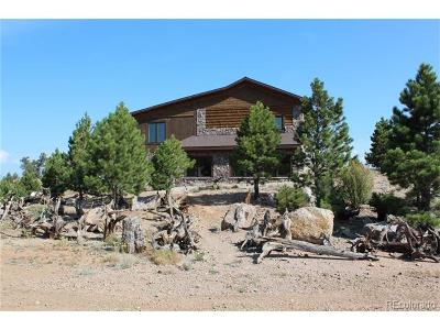 Park County Single Family Home Active: 2860 Gulch Road