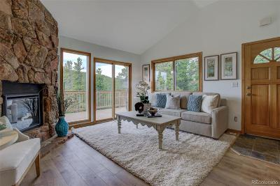 Evergreen Single Family Home Under Contract: 48 Hill Circle