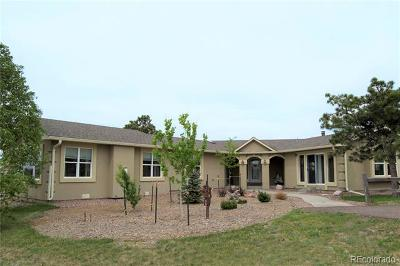 Elbert CO Single Family Home Active: $590,900