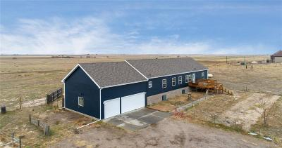 Strasburg Single Family Home Under Contract: 7462 South County Road 149