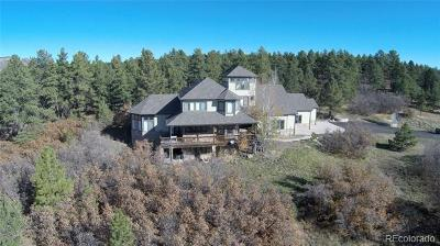 Larkspur CO Single Family Home Active: $1,300,000