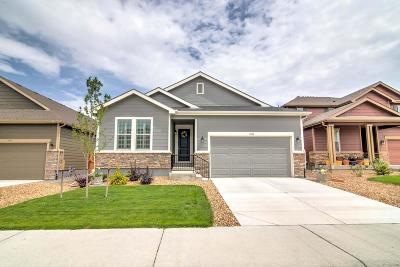 Castle Rock Single Family Home Active: 3382 Caprock Way