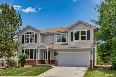 Highlands Ranch Single Family Home Active: 97 Sylvestor Place