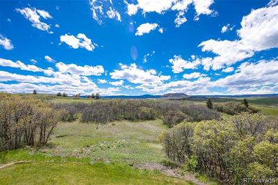 Bell Mountain, Bell Mountain Ranch Single Family Home Active: 750 Bold Sun Circle