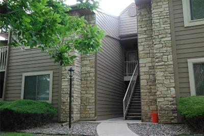 Englewood Condo/Townhouse Under Contract: 10303 East Peakview Avenue #G203
