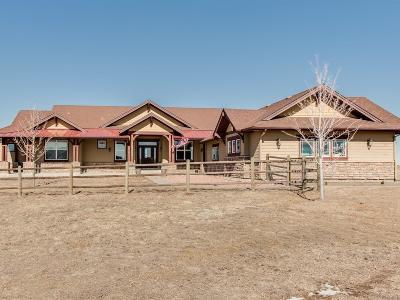 Elbert County Single Family Home Under Contract: 33500 Greystone Circle
