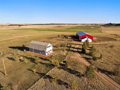 Elbert CO Single Family Home Under Contract: $599,900