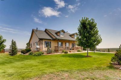 Elbert CO Single Family Home Active: $849,000