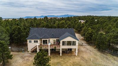 Colorado Springs Single Family Home Active: 11690 Round Table Court