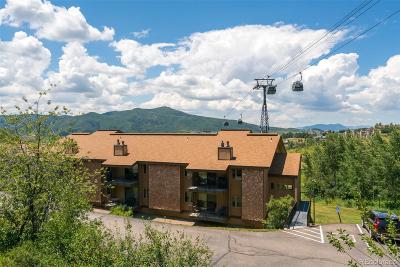 Steamboat Springs Condo/Townhouse Active: 2350 Ski Trail Court #321