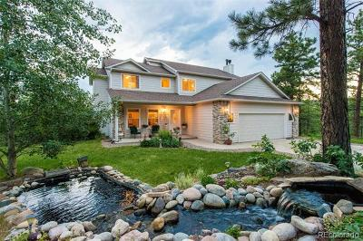 Littleton Single Family Home Active: 8808 South Murphy Gulch Road