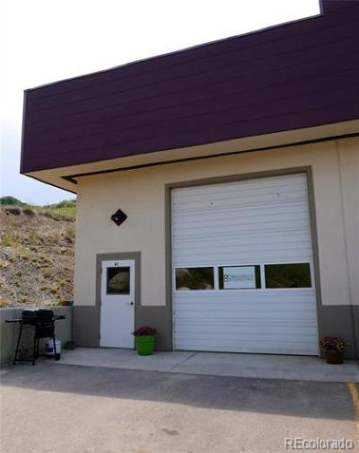 Steamboat Springs CO Commercial Active: $425,000