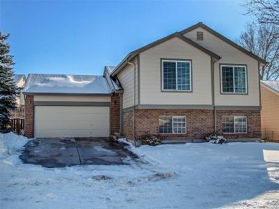 Highlands Ranch Single Family Home Under Contract: 1246 Iris Court