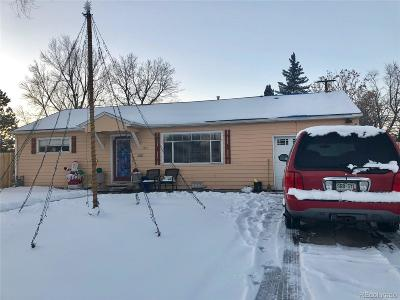 Denver Single Family Home Active: 1325 South Winona Court