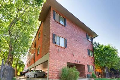 Denver Condo/Townhouse Active: 1062 Josephine Street #9