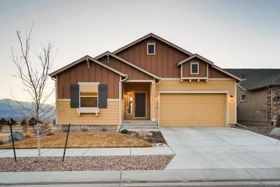 Colorado Springs Single Family Home Active: 10636 Echo Canyon Drive