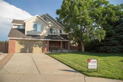Highlands Ranch Single Family Home Under Contract: 1794 Brookside Drive