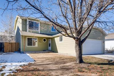 Denver Single Family Home Active: 4343 Deephaven Court