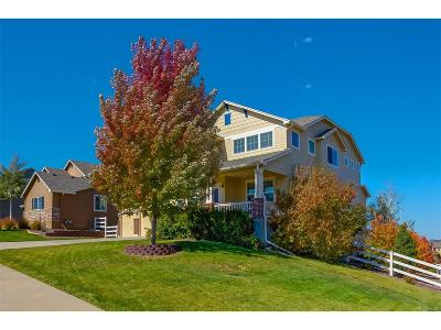 Crystal Valley, Crystal Valley Ranch Single Family Home Active: 2791 Mountain Sky Drive