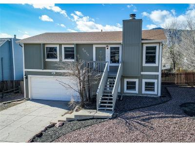 Colorado Springs Single Family Home Active: 1035 Crosstrail Drive