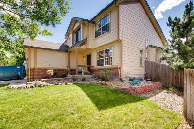 Castle Rock Single Family Home Active: 1433 Scott Canyon Lane