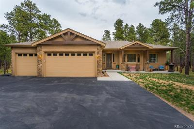 Colorado Springs CO Single Family Home Under Contract: $670,000