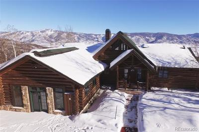 Steamboat Springs  Single Family Home Active: 28900 Skyline Drive