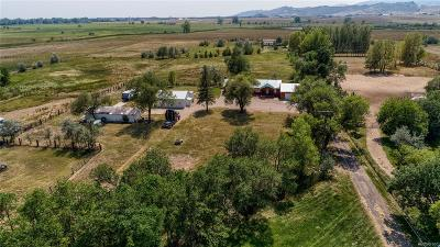 Fort Collins Single Family Home Under Contract: 3809 West County Road 50
