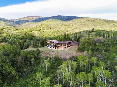 Steamboat Springs Single Family Home Active: 34815 Panorama Drive