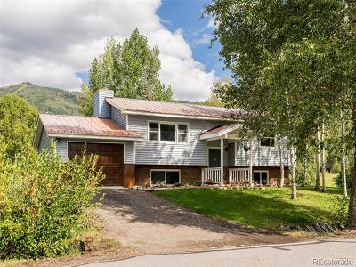 Steamboat Springs Single Family Home Active: 1785 Timothy Drive