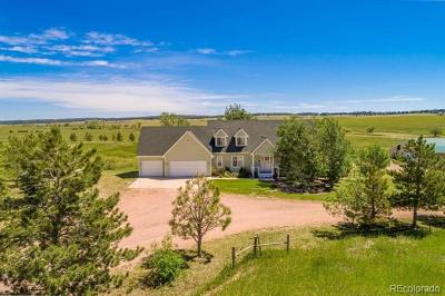 Elbert County Single Family Home Active: 3851 Willownook Ranch Trail