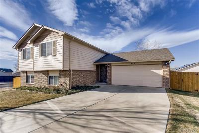 Evans Single Family Home Active: 3133 39th Avenue