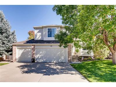 Castle Rock CO Single Family Home Active: $395,000