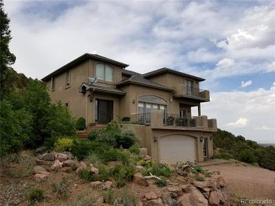 Colorado Springs Single Family Home Active: 15430 Cuerno Verde View