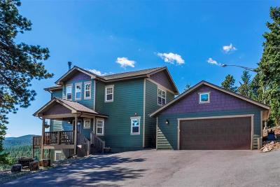 Conifer Single Family Home Sold: 10111 Blue Sky Trail