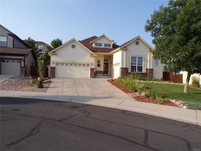 Castle Rock Single Family Home Active: 1422 Colebrook Court