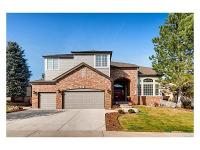 Douglas County Single Family Home Active: 8405 Green Island Circle