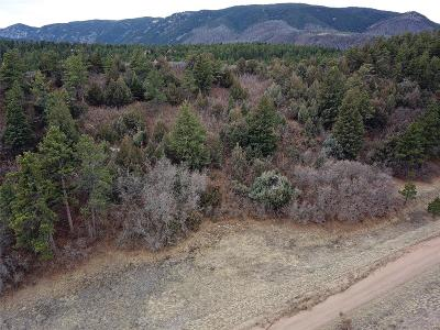 Douglas County Residential Lots & Land Active: 4438 Comanche Drive