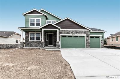 Erie Single Family Home Active: 2855 Eagle Cir